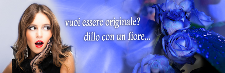 Banner generico rose blu