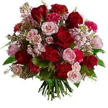 Aliflora rose e armonia